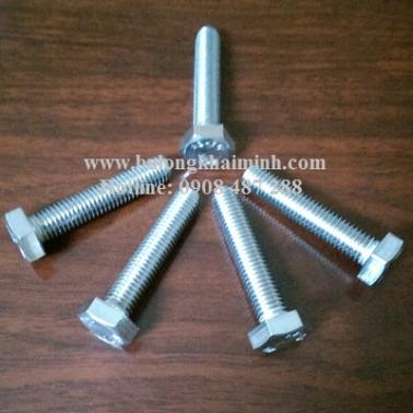 Bulong Inox 304 M10x50